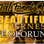 INTERVIEW | Dupe Olorunjo, author of A Beautiful Wilderness
