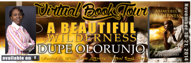 INTERVIEW | Dupe Olorunjo, Author of A Beautiful Wilderness @dupeolorunjo